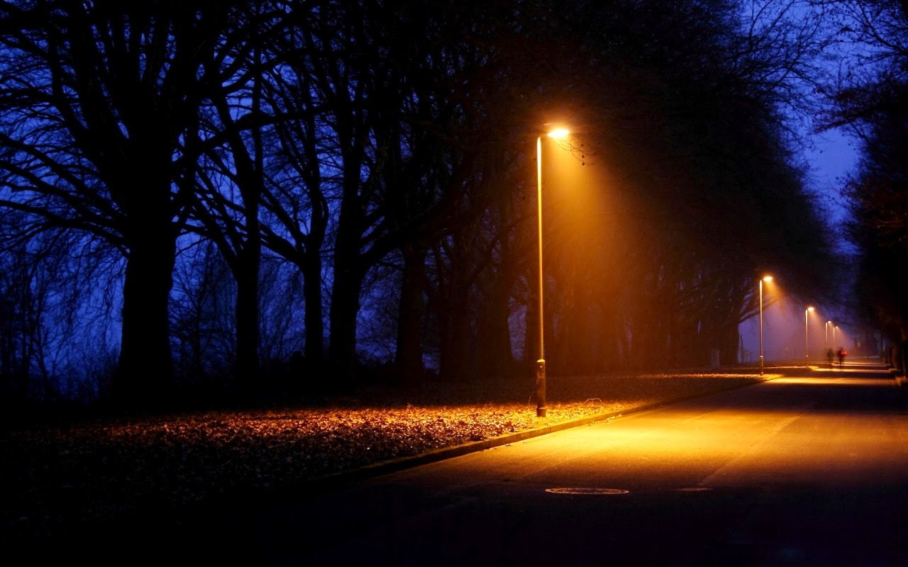 Street lights may affect common bats
